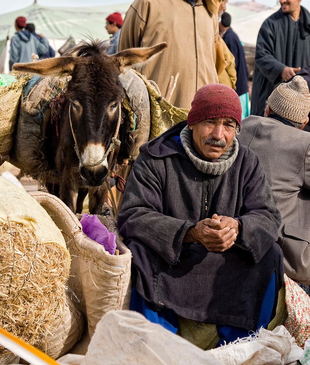 Moroccan Street Merchant and Donkey