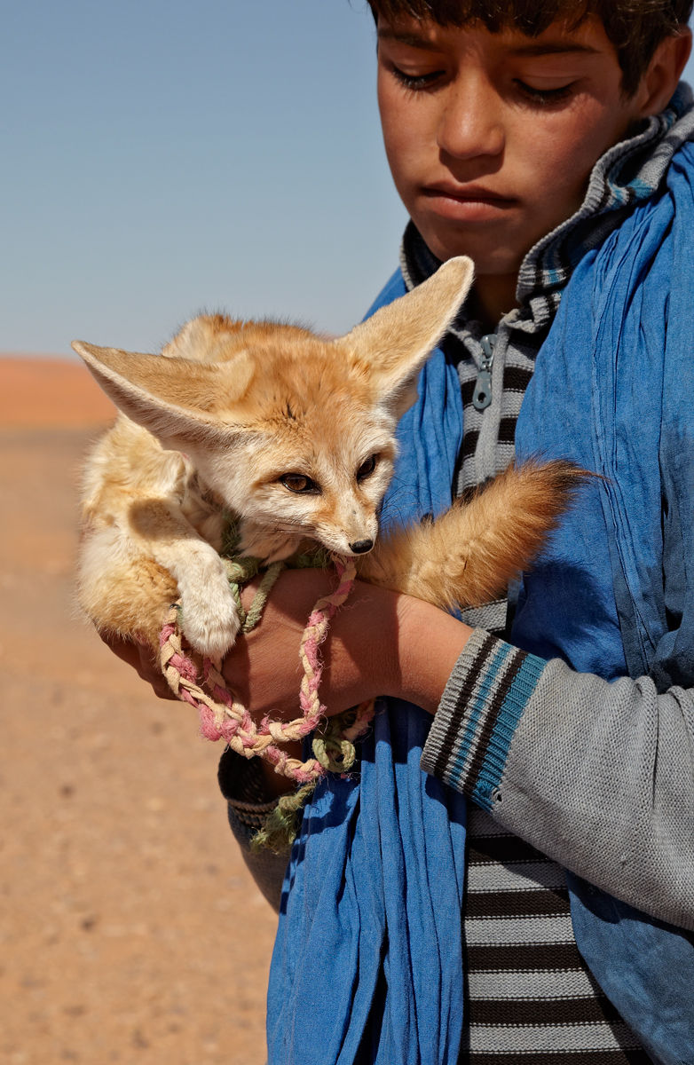 Boy and Fennec Fox